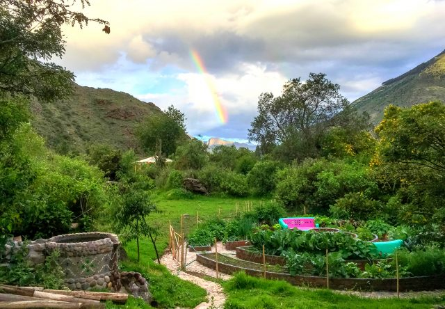 There have been so many rainbows lately. Here is a beautiful one on New Year's Day. Our vegetable garden is such a Timeless True World.