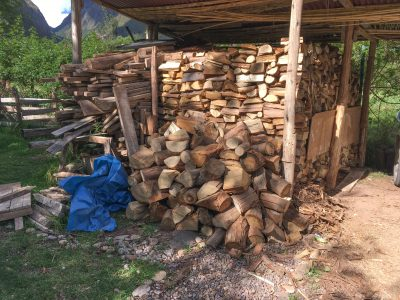 One and a half truckloads of firewood fill our shed