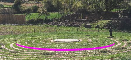 Raised-Circle-Center-Magenta-Detail
